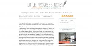 LittleProgressNotes.com