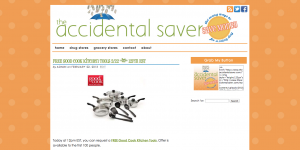 theaccidentalsaver.com
