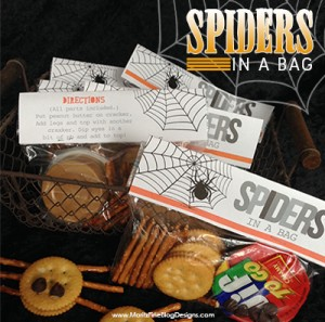 halloween spider in a bag
